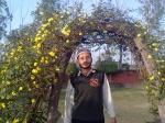 Mubashshir